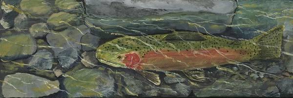 Spawn Painting - Red Steelhead by Sara Stevenson