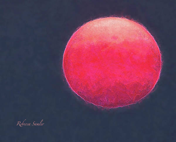 Photograph - Red Sun by Rebecca Samler