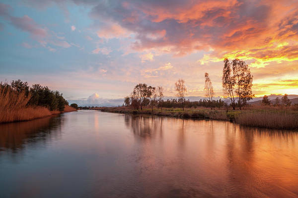 Photograph - Red Sunset On The Pond by Daniele Fanni