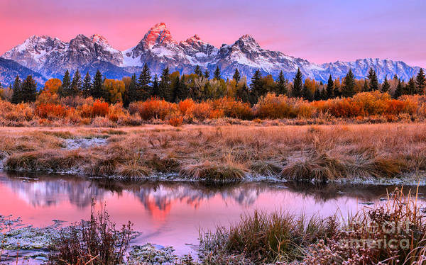 Photograph - Red Teton Tip Reflections by Adam Jewell