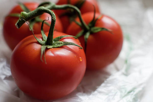 Photograph - Red Tomatoes On The Vine by Terry DeLuco