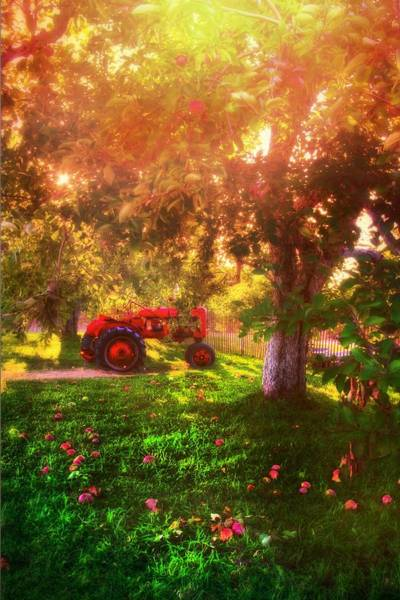 Photograph - Red Tractor On An Apple Farm by Joann Vitali