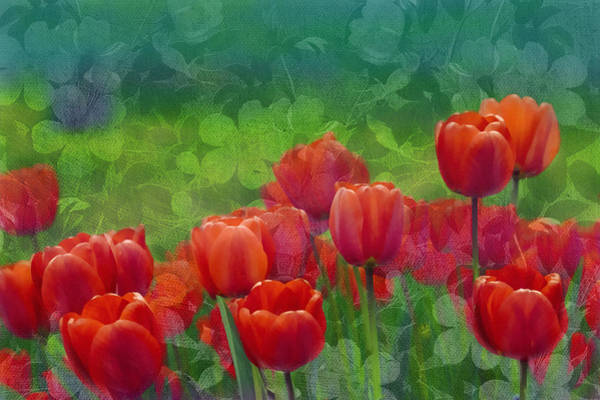 Romantic Flower Mixed Media - Red Tulips by Isabella Howard