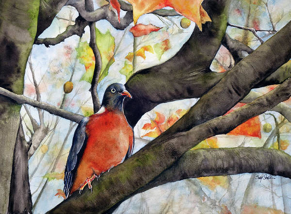 Wall Art - Painting - Red Turtle Dove by Susy Soulies