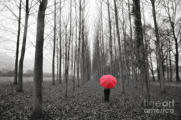 Red Umbrella In An Allee Art Print