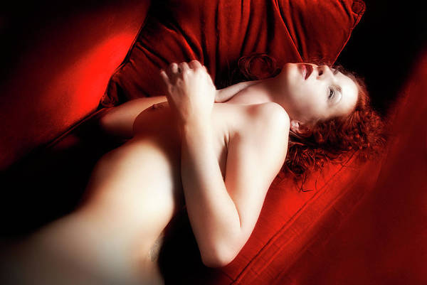 Photograph - Red Velvet Seduction by Harry Spitz