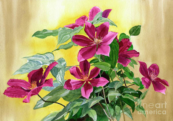 Wall Art - Painting - Red Violet Clematis With Gold Background by Sharon Freeman