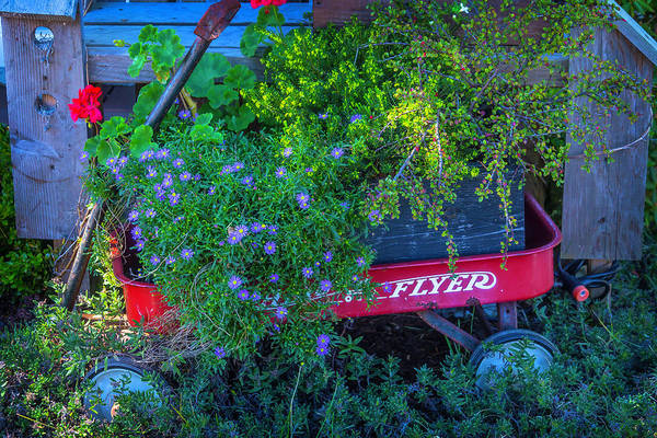 Red Geraniums Wall Art - Photograph - Red Wagon In The Garden by Garry Gay