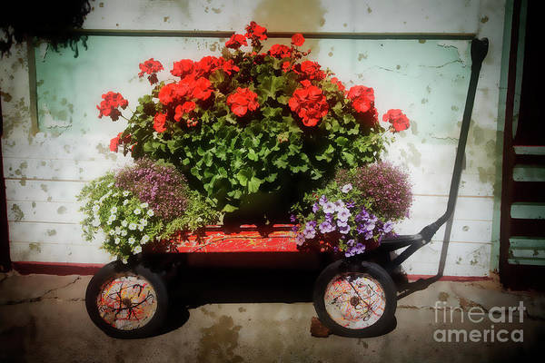 Photograph - Red Wagon by Scott Kemper