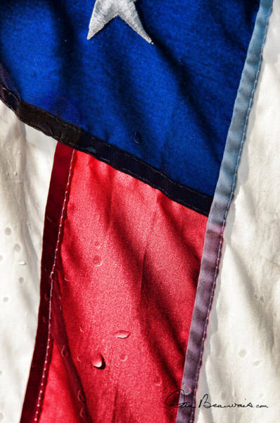Photograph - Red White And Blue 8755 by Dan Beauvais