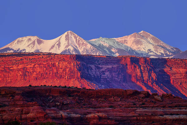 Photograph - Red, White And Blue by Greg Norrell