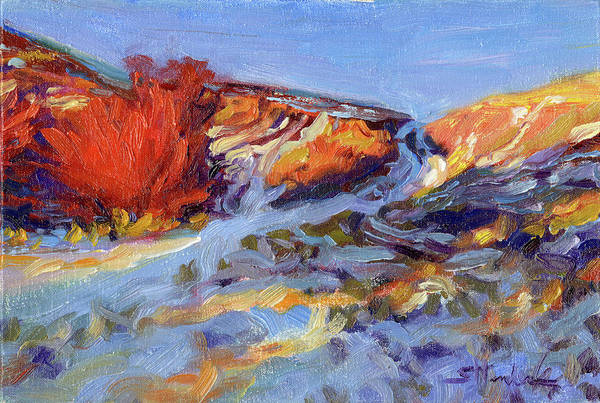 Country Style Painting - Redbush by Steve Henderson