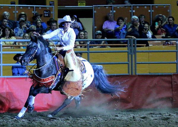 Photograph - Rodeo Queen At The Grand National Rodeo by John King