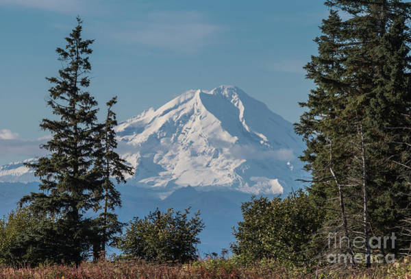 Mount Redoubt Photograph - Redoubt Volcano by Eva Lechner