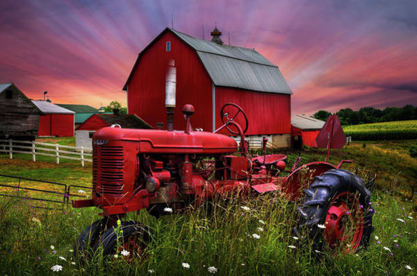 Photograph - Reds At Sunset by Debra and Dave Vanderlaan