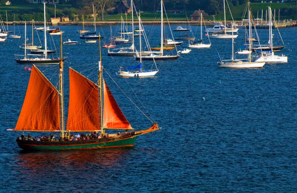 Photograph - Redsails Schooner In Newport Harbor by Ginger Wakem