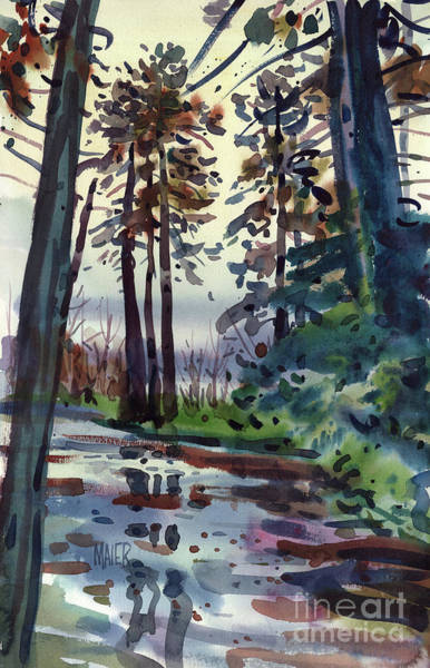 Russian River Painting - Redwood Reflections by Donald Maier