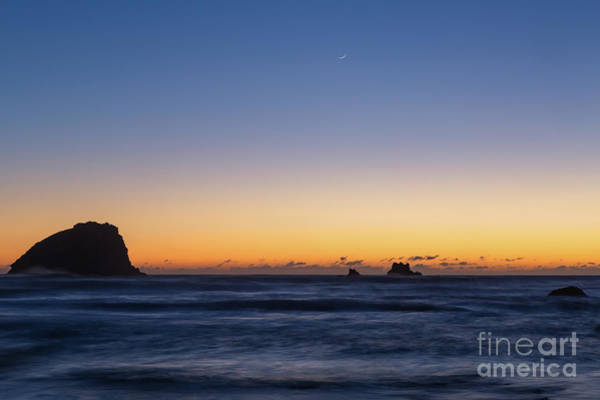 Photograph - Redwoods Sunset Crescent Moon by Richard Sandford