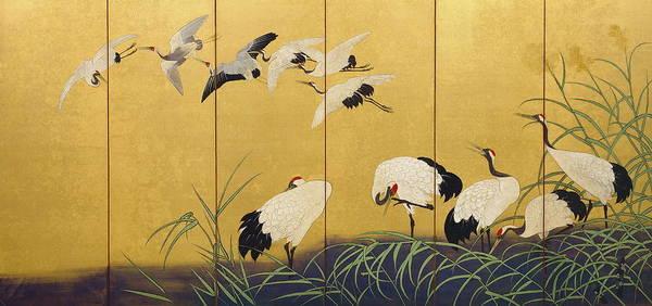 Wall Art - Painting - Reeds And Cranes by Suzuki Kiitsu