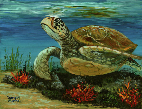 Painting - Reef Honu by Darice Machel McGuire