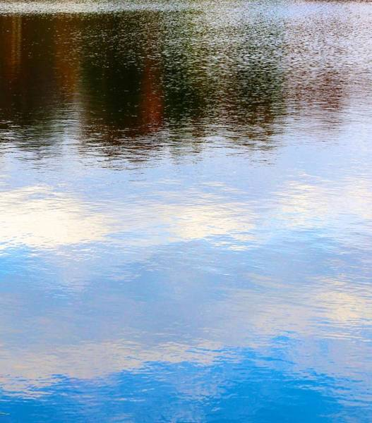Photograph - Reflected Clouds by Polly Castor