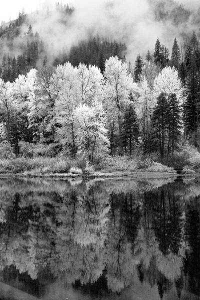 Reflected Glories Art Print