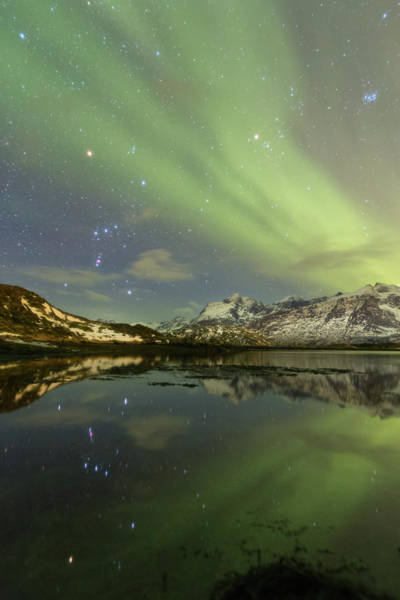 Photograph - Reflected Orion by Alex Conu