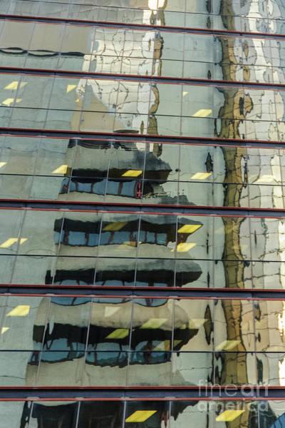 Photograph - Reflecting Eagle 5 by Werner Padarin