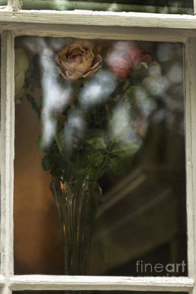 Wall Art - Photograph - Reflecting On My Love by Margie Hurwich