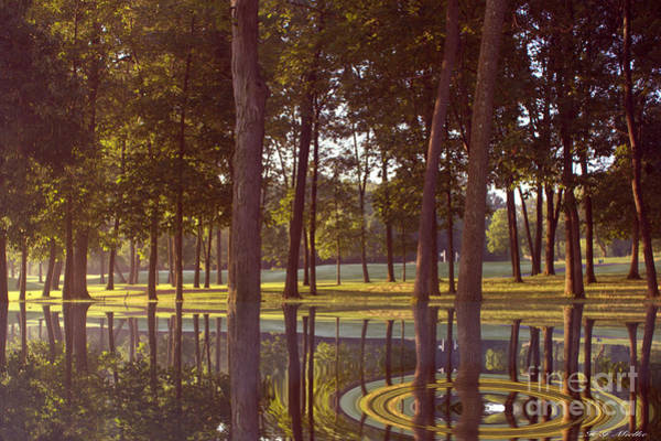 Wall Art - Photograph - Reflection by Heinz G Mielke