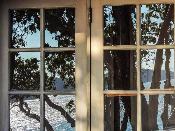 Photograph - Reflection In A Window by NaturesPix