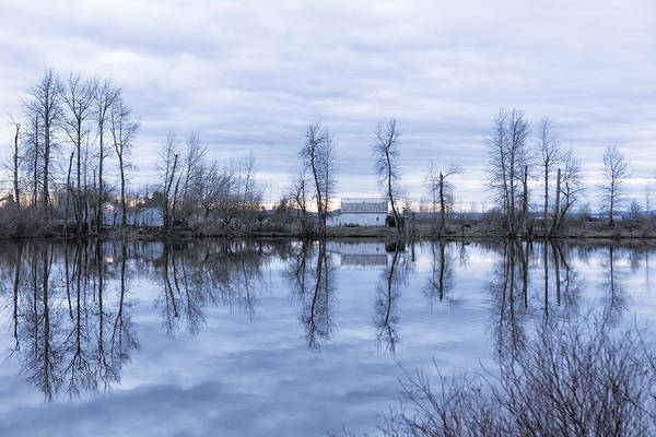 Photograph - Reflection In Blue by Belinda Greb