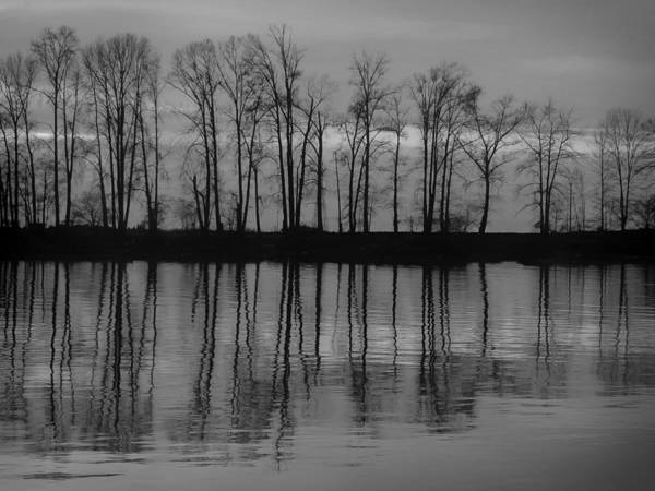 Photograph - Reflection by Jacqui Boonstra