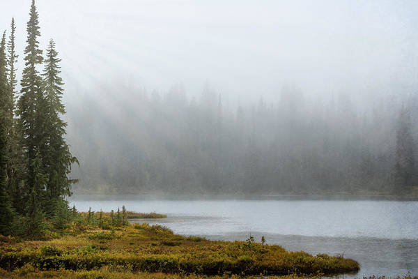 Photograph - Reflection Lake Mist by Mary Jo Allen