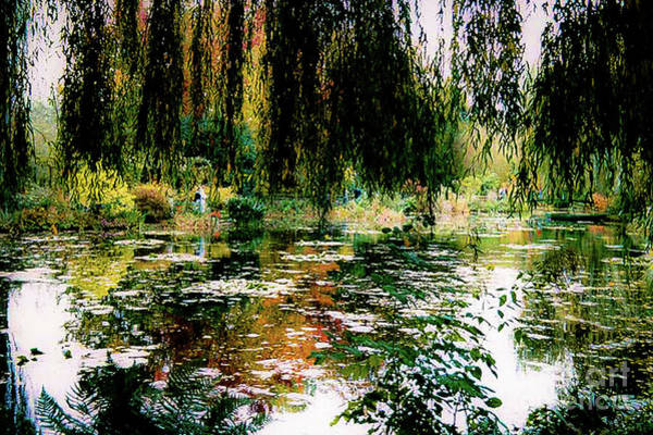 Wall Art - Photograph - Reflection On Oscar - Claude Monet's Garden Pond by D Davila