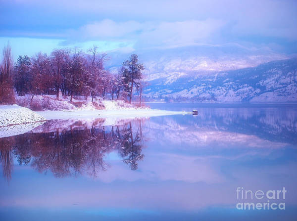 Photograph - Reflections Along Highway 97 by Tara Turner