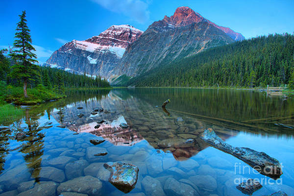 Photograph - Reflections And Boulders At Cavell Lake by Adam Jewell