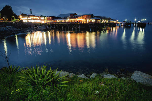 Photograph - Reflections At Fisherman's Wharf by Margaret Pitcher