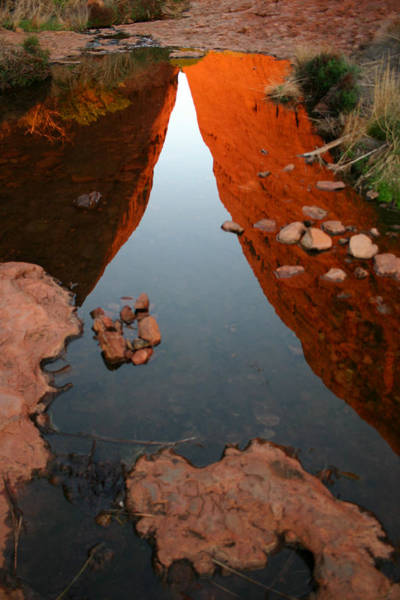 Photograph - Reflections At Kata Tjuta In The Northern Territory by Keiran Lusk