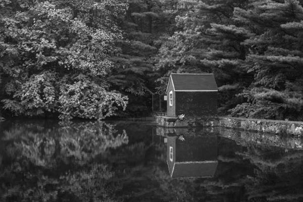 Mediation Photograph - Reflections At Stewart Woods Bw by Karol Livote