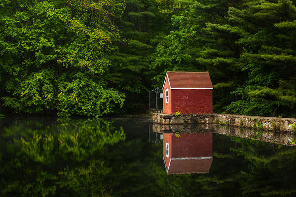 Mediation Photograph - Reflections At Stewart Woods by Karol Livote