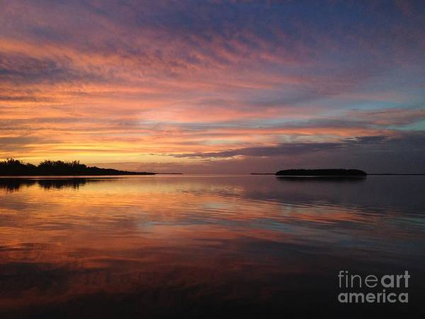 Photograph - Reflections At Sunset In Key Largo by Louise Lindsay