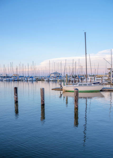 Photograph - Reflections At The Southern Yacht Club, New Orleans by Chris Coffee