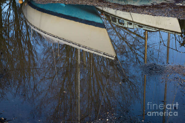 Photograph - Reflections by Brian Roscorla