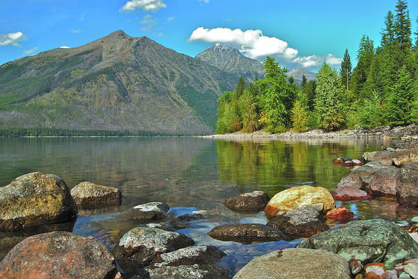 Montana State Photograph - Reflections Glacier National Park  by Michael Peychich