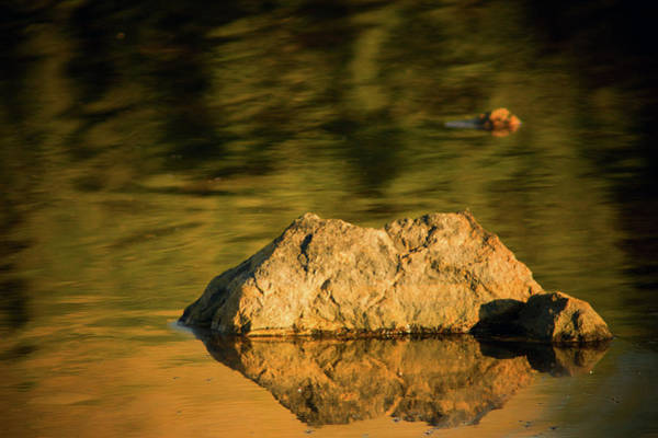 Photograph - Reflections In Stone by John De Bord