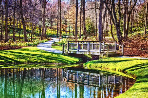 Cypress Gardens Photograph - Reflections In The Pond by Debra and Dave Vanderlaan