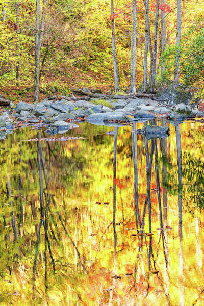 Photograph - Reflections In The River by Victor Culpepper