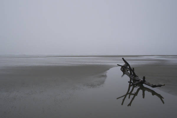 Photograph - Reflections In The Tide by HW Kateley