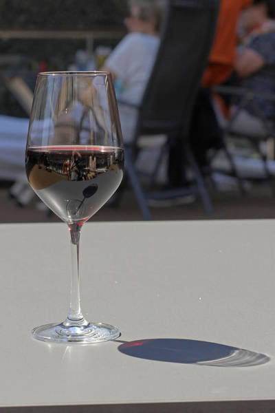 Photograph - Reflections In Wine Glass by Tony Murtagh